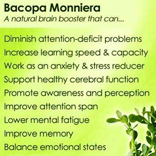 Amazon.com: mi nature Organic Brahmi Leaves Powder (Bacopa Monnieri) USDA Certified BRAHMI Powder- 227 g/8 OZ/1/2 lb | 100% Natural & Pure Hair Conditioner ...