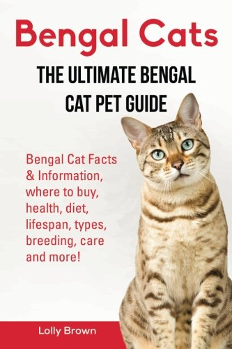 Bengal Cats: Bengal Cat Facts & Information, where to buy, health, diet, lifespan, types, breeding, care and more! The Ultimate Bengal Cat Pet Guide