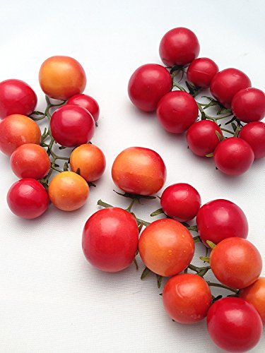 artificial tomatoes - 9