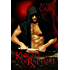 Knight of Rapture: a Druid Knight Story