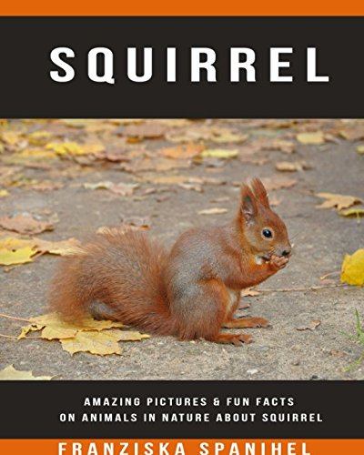 Squirrel: Amazing Pictures & Fun Facts on Animals in Nature about Squirrel (Squirrels About)