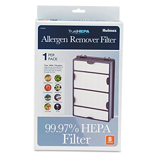 Holmes Replacement Modular HEPA Filter for Air Purifiers, 10