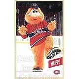 Mascot Hockey Card 2015-16 Montreal Canadiens Postcards #25 Mascot