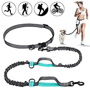 SHINE HAI Retractable Hands Free Dog Leash with Dual Bungees for Dogs up to 150lbs, Adjustable Waist Belt, Reflective Stitching Leash for Running Walking Hiking Jogging Biking 30