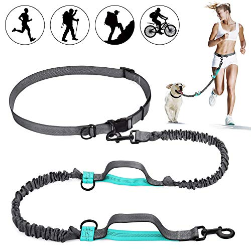 (SHINE HAI Retractable Hands Free Dog Leash with Dual Bungees for Dogs up to 150lbs, Adjustable Waist Belt, Reflective Stitching Leash for Running Walking Hiking Jogging Biking)