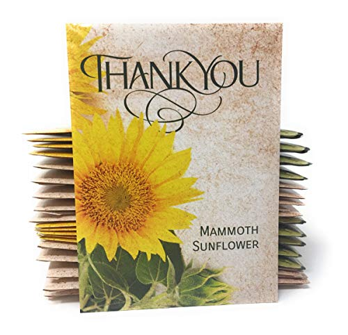 (Thank You - Mammoth Sunflower Seed Packet Party Favors - Already Filled - Pack of 20)