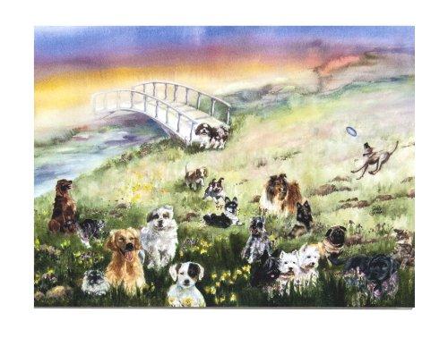 Dogs Rainbow Bridge (Rainbow Bridge Pet Sympathy Card for Dog)