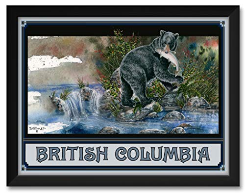 (Black Bear British Columbia Canada Framed Art Print by Dave Bartholet. Print Size: 18