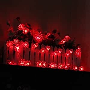 Innoo Tech**4M 40 LED double-deck Lotus fairy string light Red for Chrismas, Party, Wedding, Room, Garden, Lawn, Porch, etc