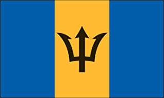 product image for Valley Forge Flag 3-Foot by 5-Foot Nylon Barbados Flag