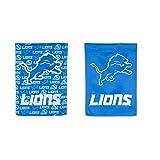 Team Sports America Detroit Lions Suede Garden Flag, 12.5 x 18 inches