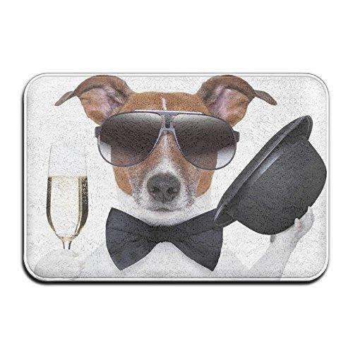 Audieru Entry Way Door Mat Rug With Non Slip Backing Gentry Dog Indoor Doormat For Kitchen,Bath,Pet