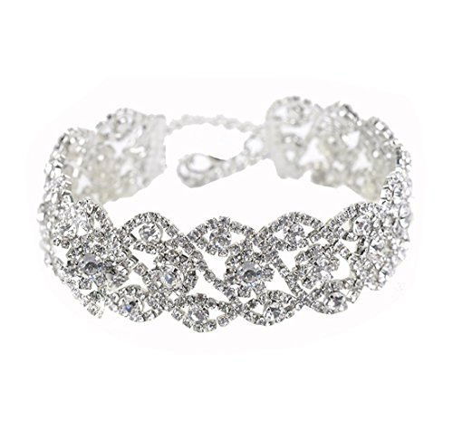 Zealmer Shoopic Thick Crystal Flowers Clavicle Silver Rhinestone Choker Necklace for Women Silver Rhinestone Choker
