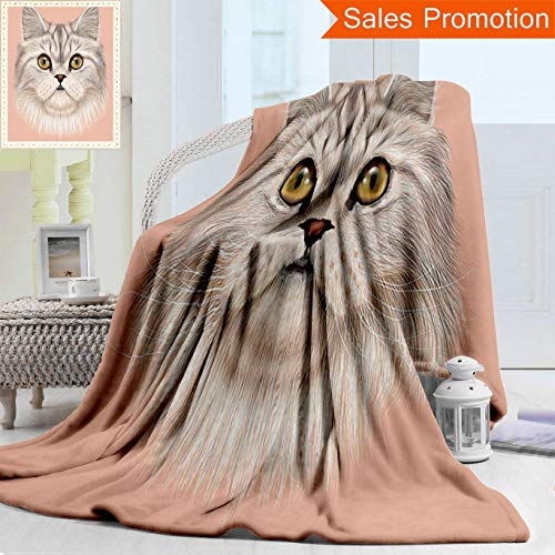 Unique Custom Warm 3D Print Flannel Blanket Cat Lover Decor Collection Portrait Of Domestic Persian Cat With Whishers Siamese Charact Cozy Plush Supersoft Blankets for Couch Bed, Twin Size 60