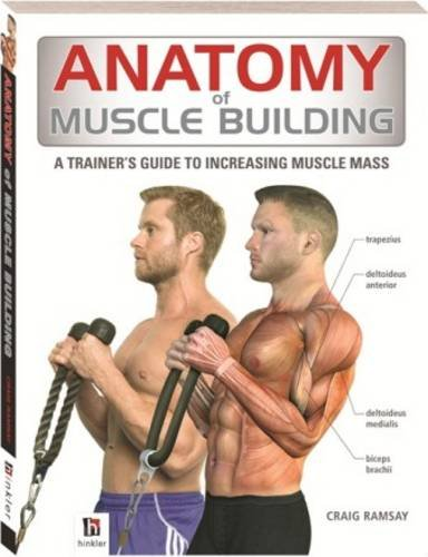 Anatomy of Muscle Building (The Anatomy Series)
