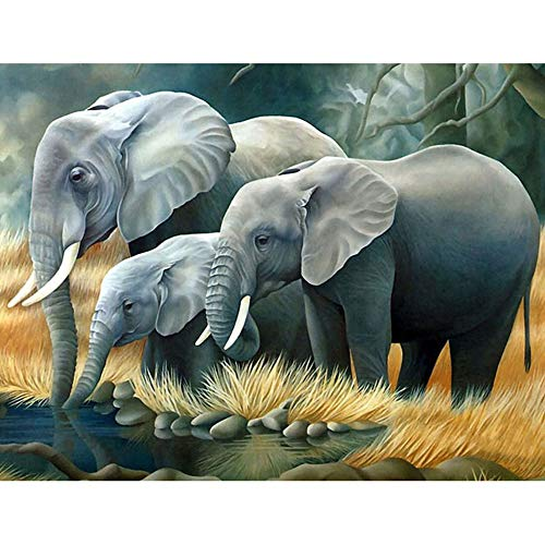 DIY 5D Diamond Painting Kit, Full Drill Elephant Embroidery Painting for Home Wall Decor Painting Arts Craft (Elephant)