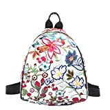 Best American Tourister Laptop Backpacks - JD Million shop Women Backpack Vintage Embroidery Ethnic Review