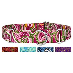 Country Brook DesignPink Paisley Martingale Dog Collar-S