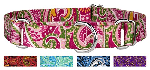 Country Brook Design Pink Paisley Martingale Dog Collar-M