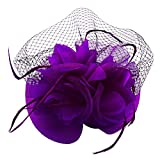U7 Lady Party Hair accessories Net Mesh Feather Hat Fascinator