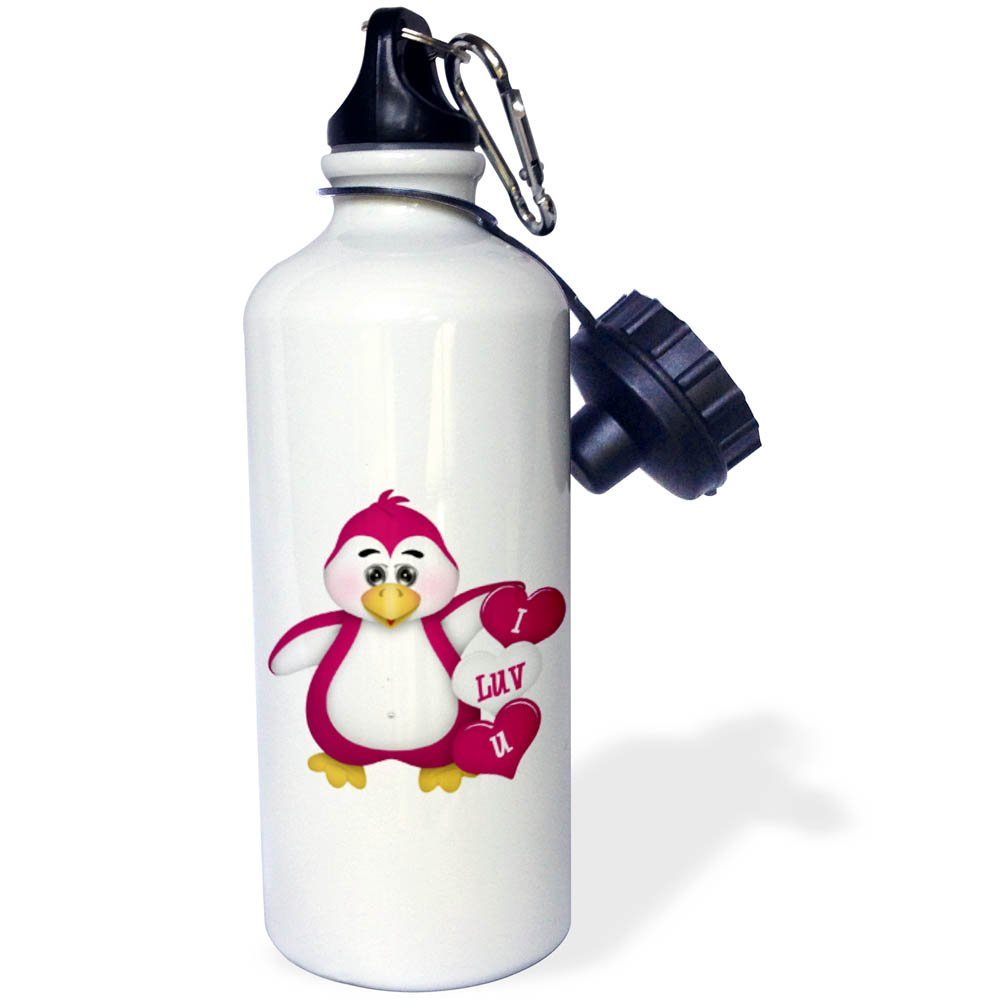 3dRose wb/_269333/_2 Cute Black and Red Happy Love Lady Bug Illustration Straw Water Bottle