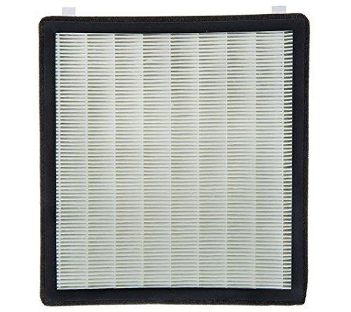 Filter Cartridge (2pk) for AIRH1Q, AIRHAQ, AIRHGQ, AIRHSQ Series and V31715 ()