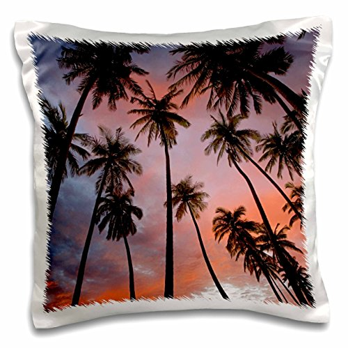 3dRose USA, Hawaii, Molokai, Kapuaiwa Coconut Grove, Palm Trees-Pillow Case, 16 by 16'' (pc_189941_1) by 3dRose