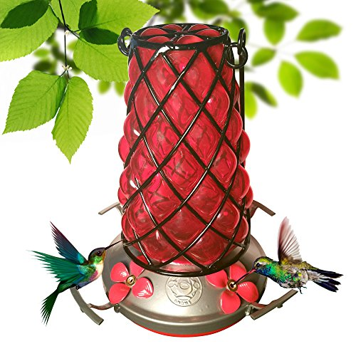 Grateful Gnome - Hummingbird Feeder - Hand Blown Glass - Red Mesh Lantern (Gnome Lantern)