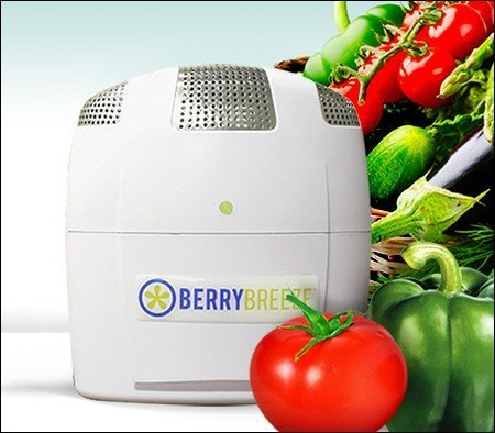 Big Save! Berry Breeze Activated Oxygen Refrigerator Deodorizer-2019 Model