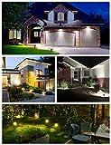 LITOM 12 LEDs Solar Landscape Spotlights, 2