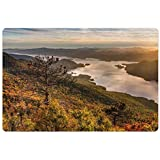 Lunarable Adirondack Pet Mat for Food and Water, The Narrows of Lake George Scenery with Surrounding Mountains on The Background, Rectangle Non-Slip Rubber Mat for Dogs and Cats, Multicolor