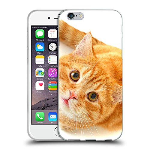 """Just Phone Cases Coque de Protection TPU Silicone Case pour // V00004289 Ardente chat regardant // Apple iPhone 6 4.7"""""""