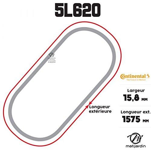 Correa cortadora 5l620 Continental Kevlar - 15,8 x 9,5 x ...