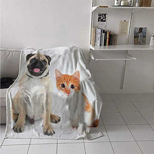 Maisi Lightweight Blanket, Adorable Kitten and Puppy Photography Cute Animal Fun Young Pets Happy Image, Throw Blanket for Kids 50x30 Inch Cream Orange White