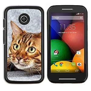 TECHCASE---Cubierta de la caja de protección para la piel dura ** Motorola Moto E ( 1st Generation ) ** --Gato de Bengala Casa gatito felino Mascota