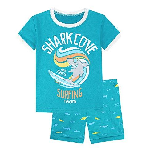 44a359c553 Jual Skypiea Co. Boys Pajamas Dinosaur 100% Cotton Toddler PJS Sets ...
