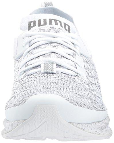 PUMA Mens Ignite Evoknit Lo Hypernature Sneaker Puma White-quarry-quiet Shade XSFpCcr5Z