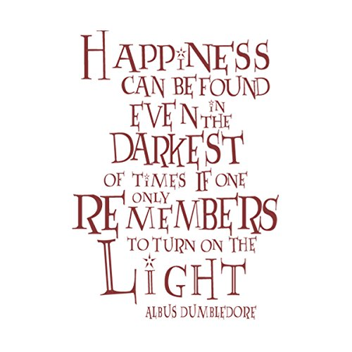 Happiness Can Be Found In The Darkest Of Times Quote: Happiness Can Be Found Even In The Darkest Of Times Vinyl
