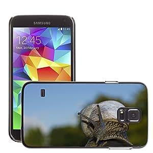 Just Phone Cover Etui Housse Coque de Protection Cover Rigide pour // M00138137 Snail Shell Escargots Lentamente // Samsung Galaxy S5 S V SV i9600 (Not Fits S5 ACTIVE)