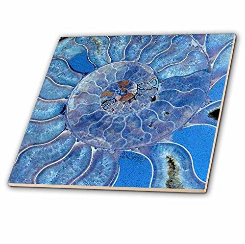 3dRose Uta Naumann Pattern - Blue Seashell-Mother-of-Pearl Closeup - 4 Inch Ceramic Tile (ct_266903_1) by 3dRose