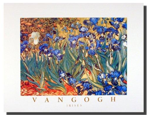 Impact Posters Gallery Wall Decor Poster Irises Flower Garden (Floral) Vincent Van Gogh Fine Art Print Picture (16x20)