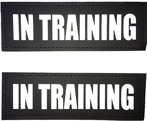 ALBCORP Reflective in Training Patches with Hook Backing for Service Animal Vests/Harnesses Small (4.6 X 1) Inch