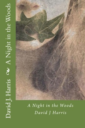 A Night in the Woods ebook