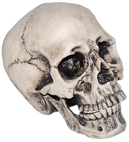 Realistic Vinyl Skull Haunted House Halloween Decoration (Halloween Tabletop)