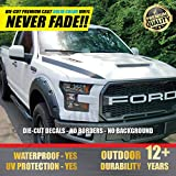 #8: All-Weather Ford F-150 & Raptor (Matte Black) Hood Pair Vinyl Decal F150 2015 16 17 18 Front Racing Stripe Stickers