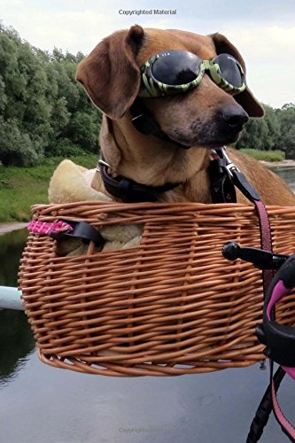 Cool Dachshund Wearing Sunglasses in a Bike Basket Pet Journal: 150 Page Lined Notebook/Diary PDF