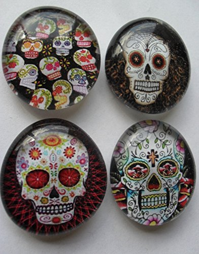 Well Dia (Dia De Los Muertos Day of The Dead Sugar Skull Glass Magnet Set of 4)