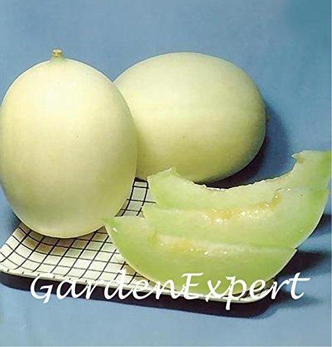 50pcs Sugar Honey Melon Seeds Whitebark Crystal Super Sweet White Melon Fruits