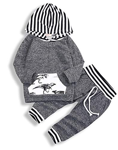 Toddler Infant Baby Boys Dinosaur Long Sleeve Hoodie Tops Sweatsuit Pants Outfit Set (Jordan Toddler Outfit)