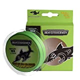 Cheap Bravefishermen Super Strong Pe Braided Fishing Line 8LB to100LB And 100Yard to 500Yard (Green, 100Yard/30LB)